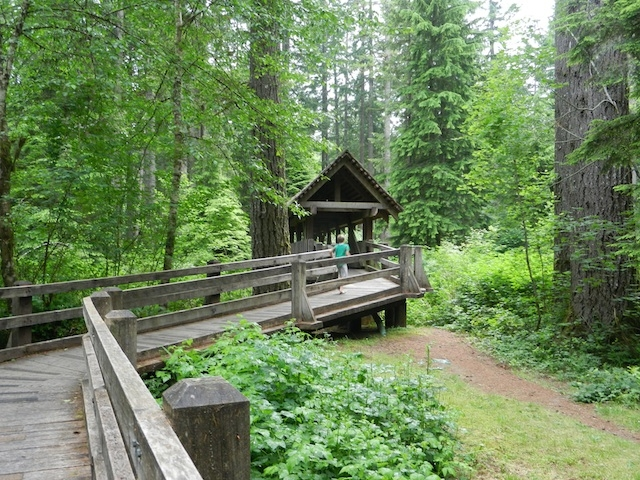 a rustic cabin stay at silver falls state park oregon Silver Falls Cabins