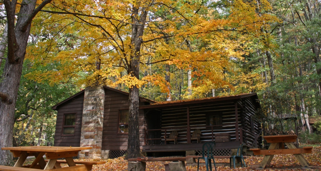 Permalink to Cabins In Cooks Forest