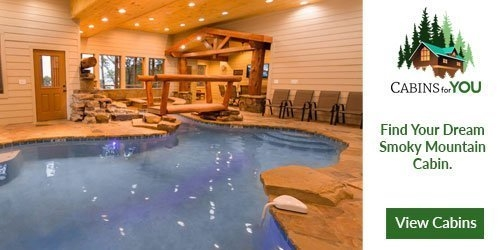 cabins for you pigeon forge cabin rentals pigeonforge Piegon Forge Cabins