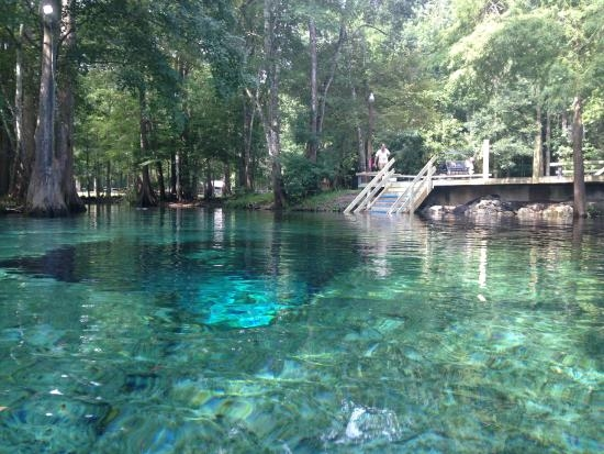 ginnie springs high springs 2019 all you need to know Ginnie Springs Cabins