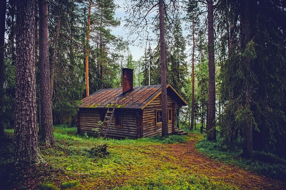 living in a cabin the pros and cons sarah scoop Living In A Cabin