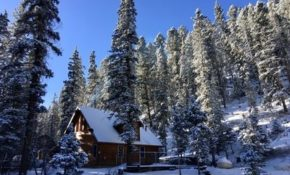 picture perfect red river mountain cabin along creek4th nt free forest out back red river Cabins Red River Nm