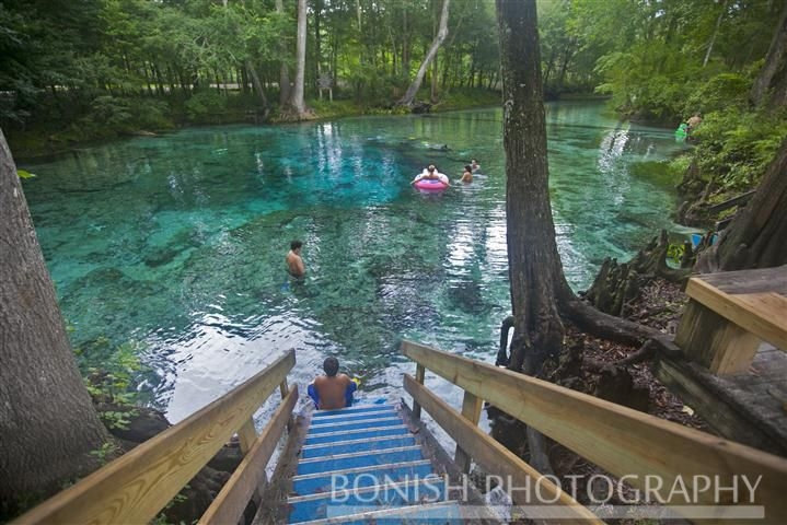 pin on scuba diving Ginnie Springs Cabins
