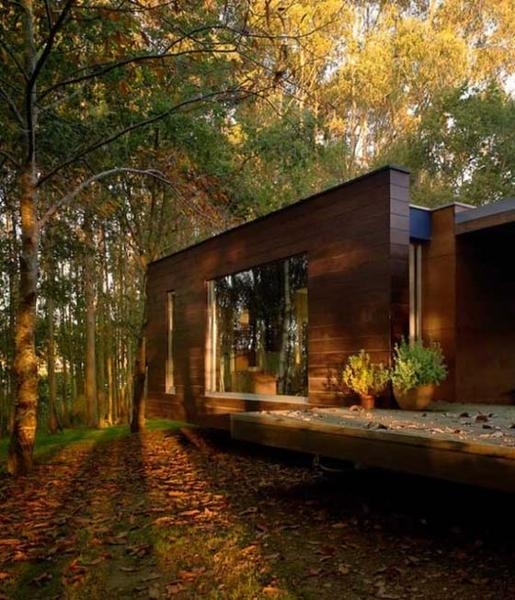 33 forest cottages and modern houses surrounded trees and Forest Cabin Designs