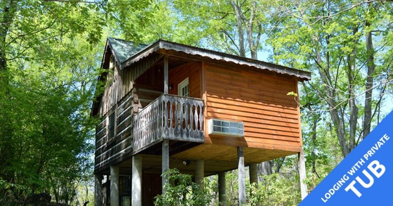accommodations hot springs resort spa Hot Springs Cabins Nc