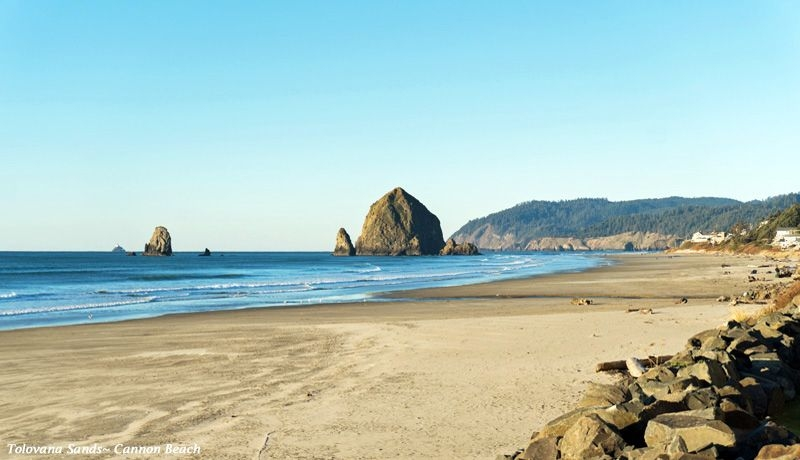 cannon beach vacation rentals beachcombers nw Cannon Beach Cabins