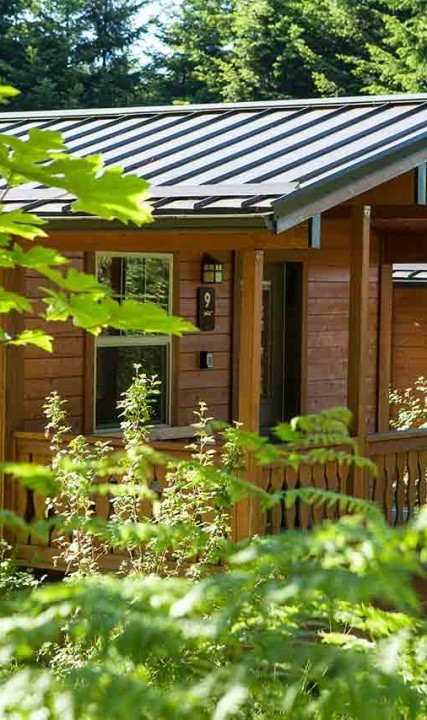 pet friendly camping and outdoor recreation tualatin valley Pet Friendly Camping Cabins