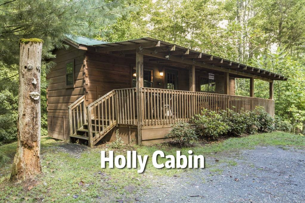 pet friendly nc mountain cabins dogs welcome Hot Springs Cabins Nc