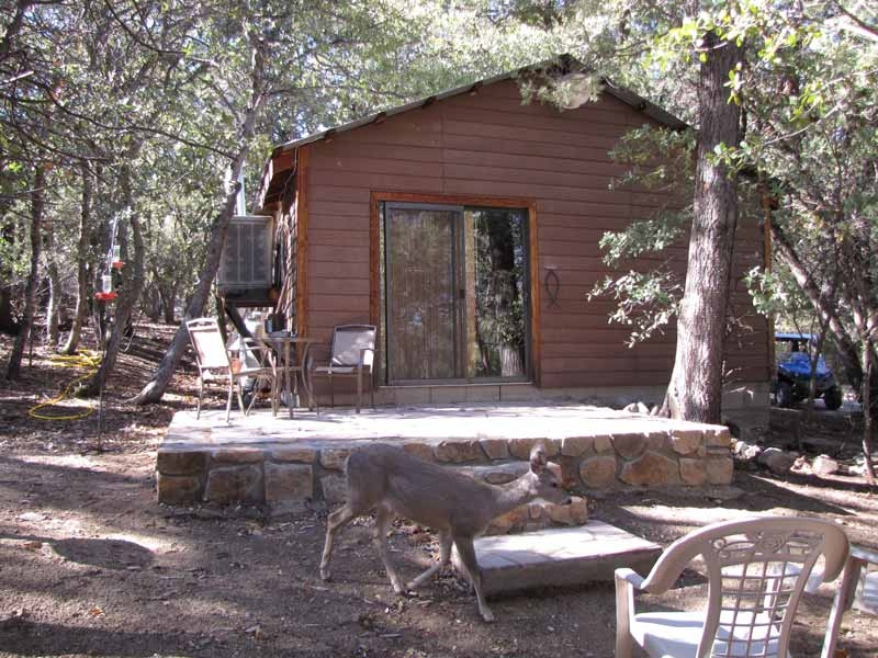 ramsey canyon cabins photo gallery Ramsey Canyon Cabins