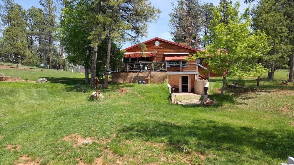 small secluded cabin located in the black hills about 10 Mt Rushmore Cabins