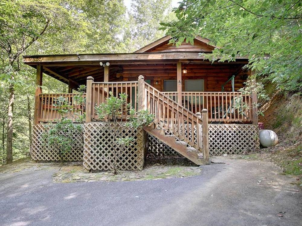 5 perks of staying in our secluded pet friendly cabins in Pet Friendly Cabins In Tennessee