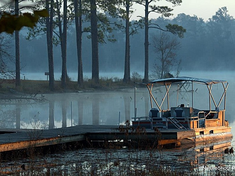 paul b johnson state park a mississippi state park located Paul B Johnson State Park Cabins