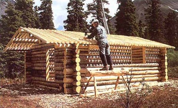 how to build a log cabin from scratch and hand Building A Log Cabin By Hand