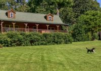 barkwells dog centric vacation rentals in asheville nc Asheville Nc Pet Friendly Cabins