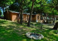 cabin 23ab each side sleeps 8 w 2 semi private rooms Cabins On Lake Whitney