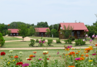 cabin fever adventures lake texoma vacation rental Cabins On Lake Texoma