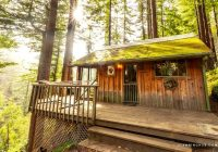 inviting cabins in the trees surrounded redwoods near big sur california Cabins Near Big Sur