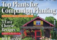 mother earth news 0405 2020 download pdf magazines Mother Earth Build This Cozy Cabin