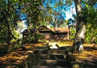 ocala national forest sweetwater cabin National Forest Cabins