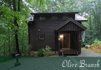 olive branch cabin hocking hills old mans cave ohio Romantic Hocking Hills Cabins