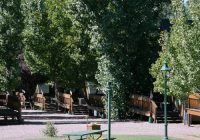pet friendly cabin lodging rates in strawberry az cabins Strawberry Cabins Az