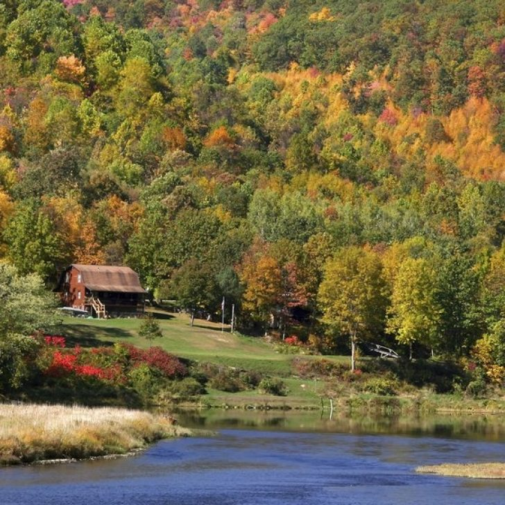 Permalink to 11 Pet Friendly Cabins In Pa