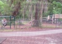 play park view from cabin 16 picture of kathryn abbey Hanna Park Cabins