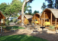 san diego metro koa is a pretty camping village in southern San Diego Camping Cabins