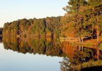 shawnee national forest cabin rentals in southern illinois Cabins In Shawnee National Forest