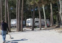 Stylish hunting island state park reviews updated 2020 Hunting Island State Park Cabins