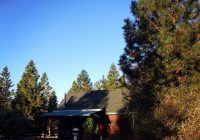 the sage cabin picture of yosemite hilltop cabins Yosemite Foresta Hilltop Cabins