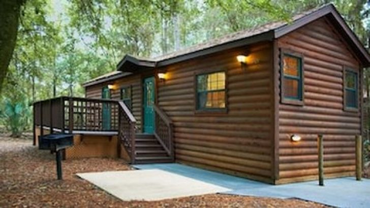 Permalink to 11 Cabins In Orlando Fl